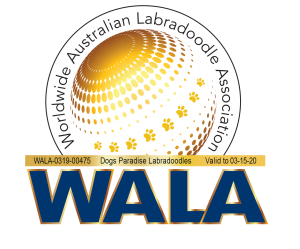 Dogs Paradise WALA logo