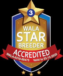 Dogs Paradise WALA Star Logo